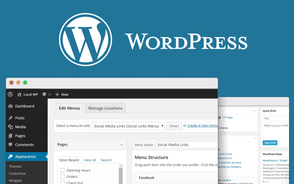 Wordpress Niche Website