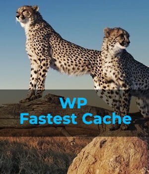 WP Fastest Cache – Supercharge Your WordPress Website